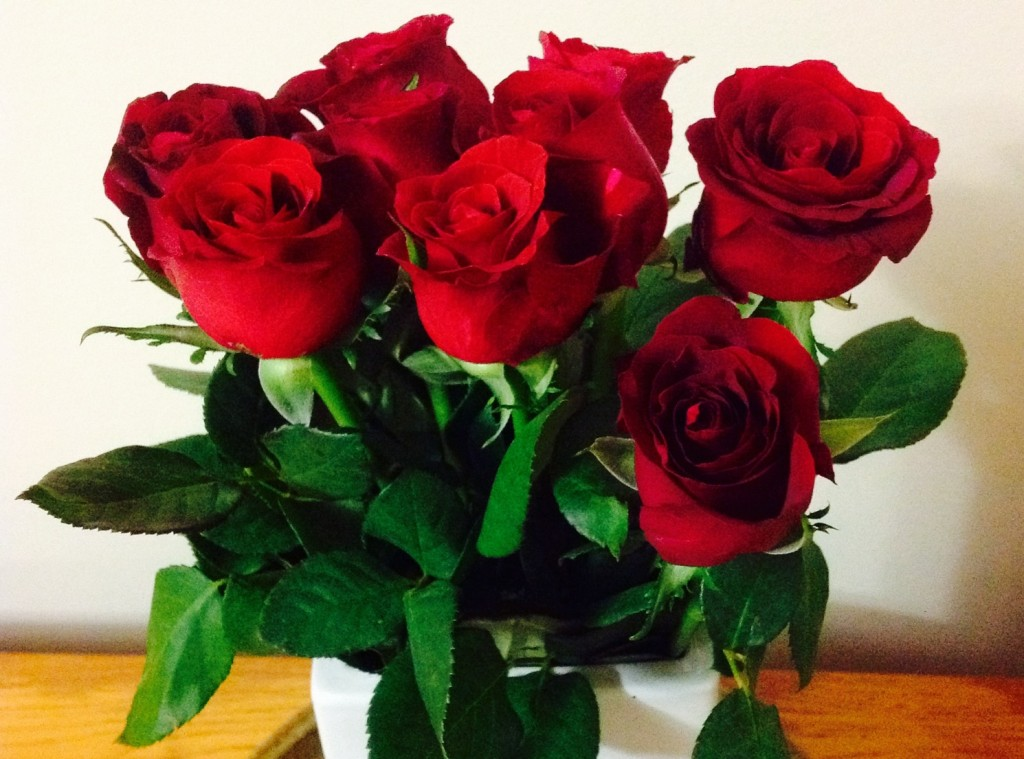 Thankful for these things, red roses, cheaper from Aldi