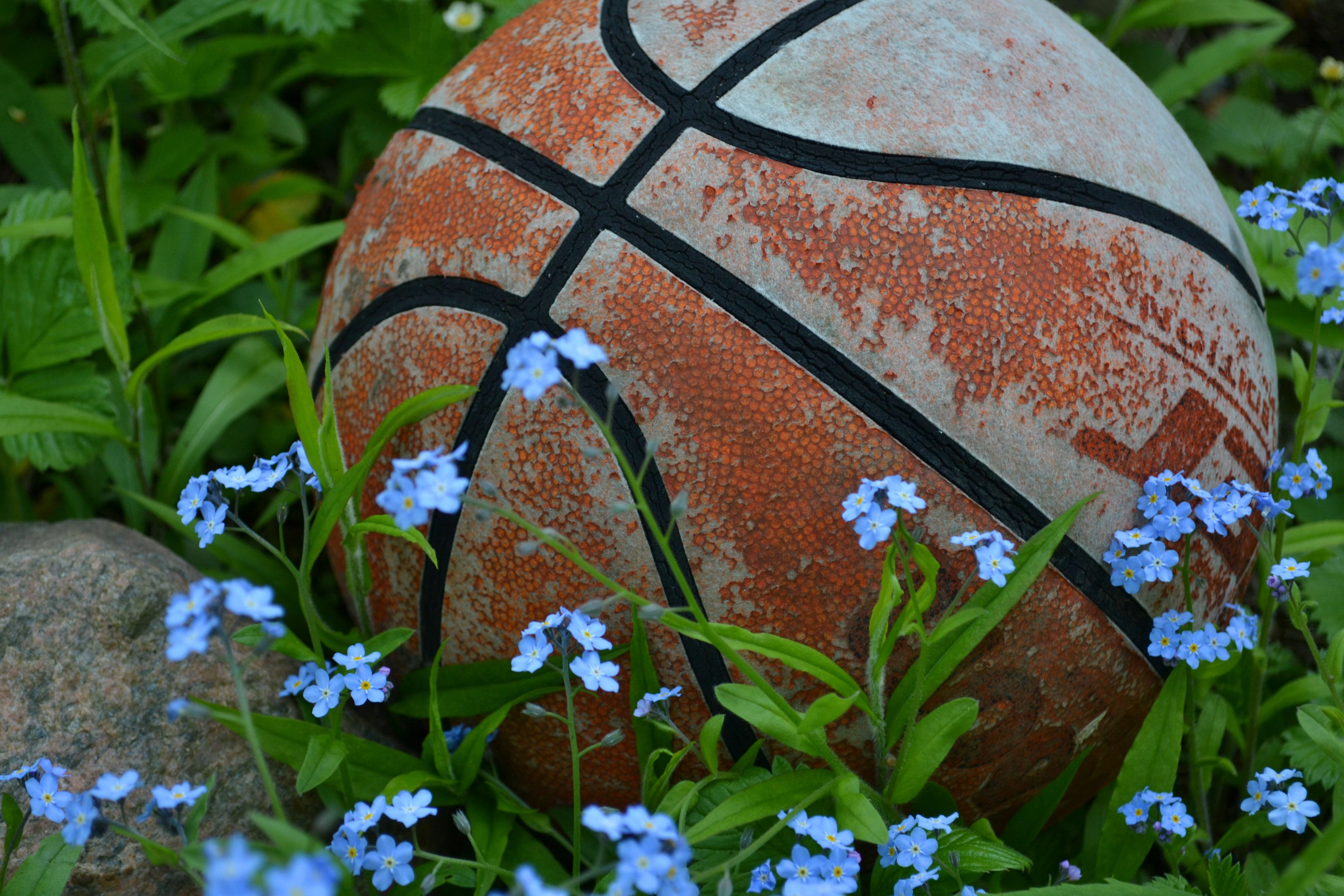 Joy in unexpected places, family, finding joy, finding peace, finding support, how to cope with family trauma,joy, Respite, soothe the soul, support for the terminally ill, support network, surviving hard times, resilient, basket ball, playing ball with children, forget me not