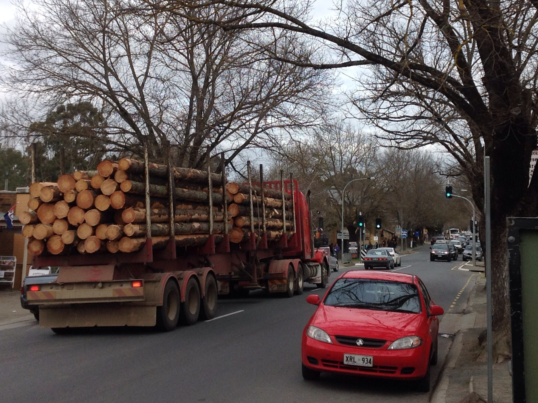 deciduous trees bare in winter, Hahndorf, logging trucks, tourist walk, winter cheer